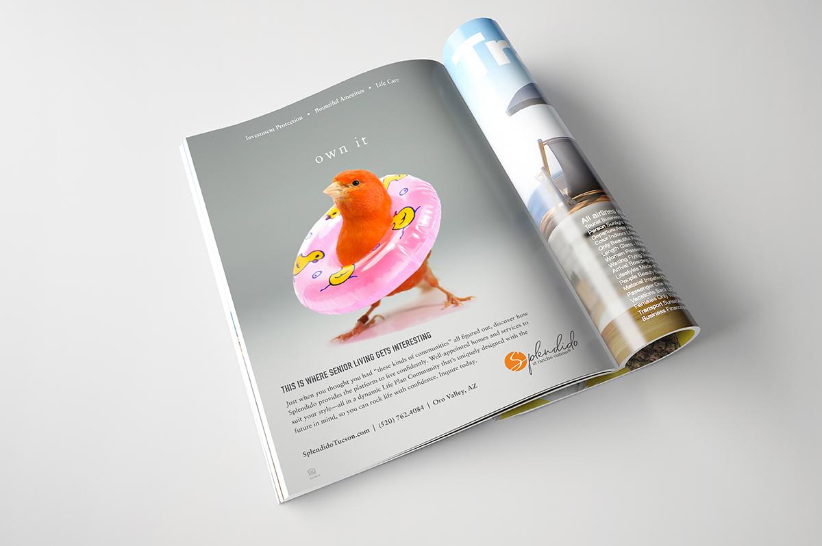 Mather Splendido Print Ad - bird with inner tube