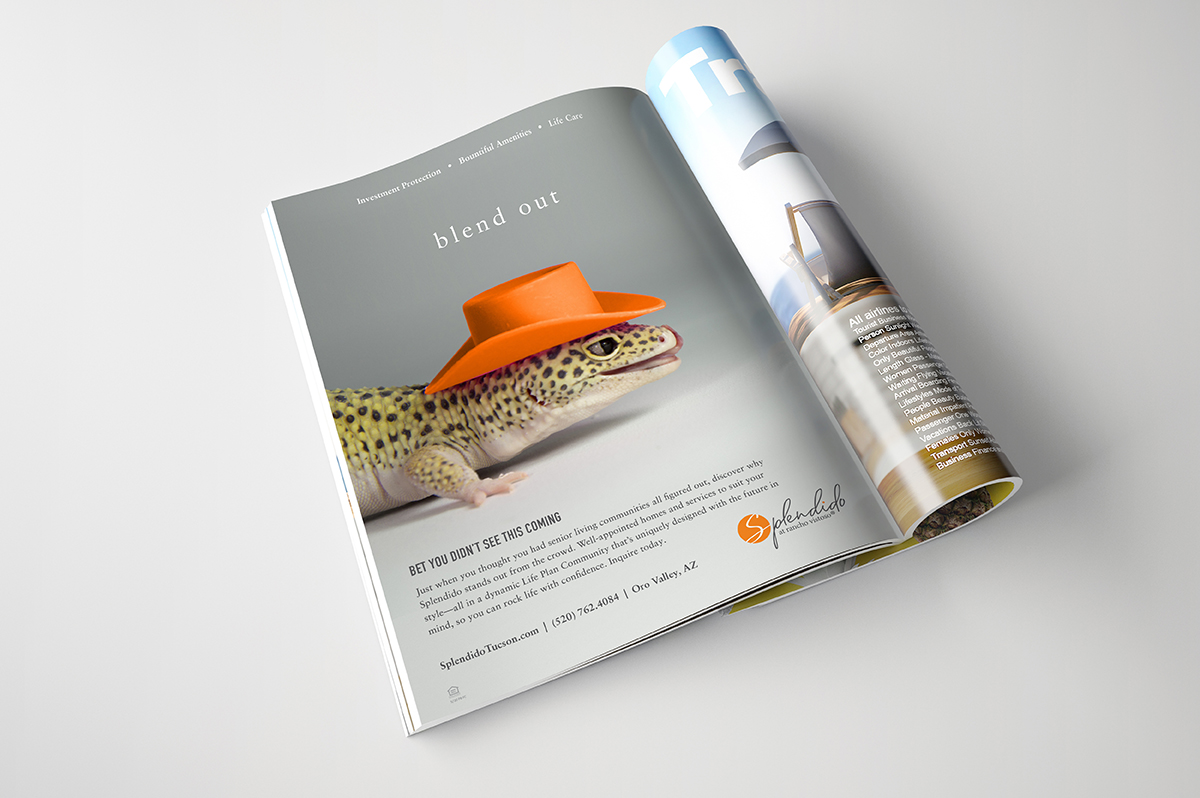 Mather Splendido Print Ad - lizard in hat